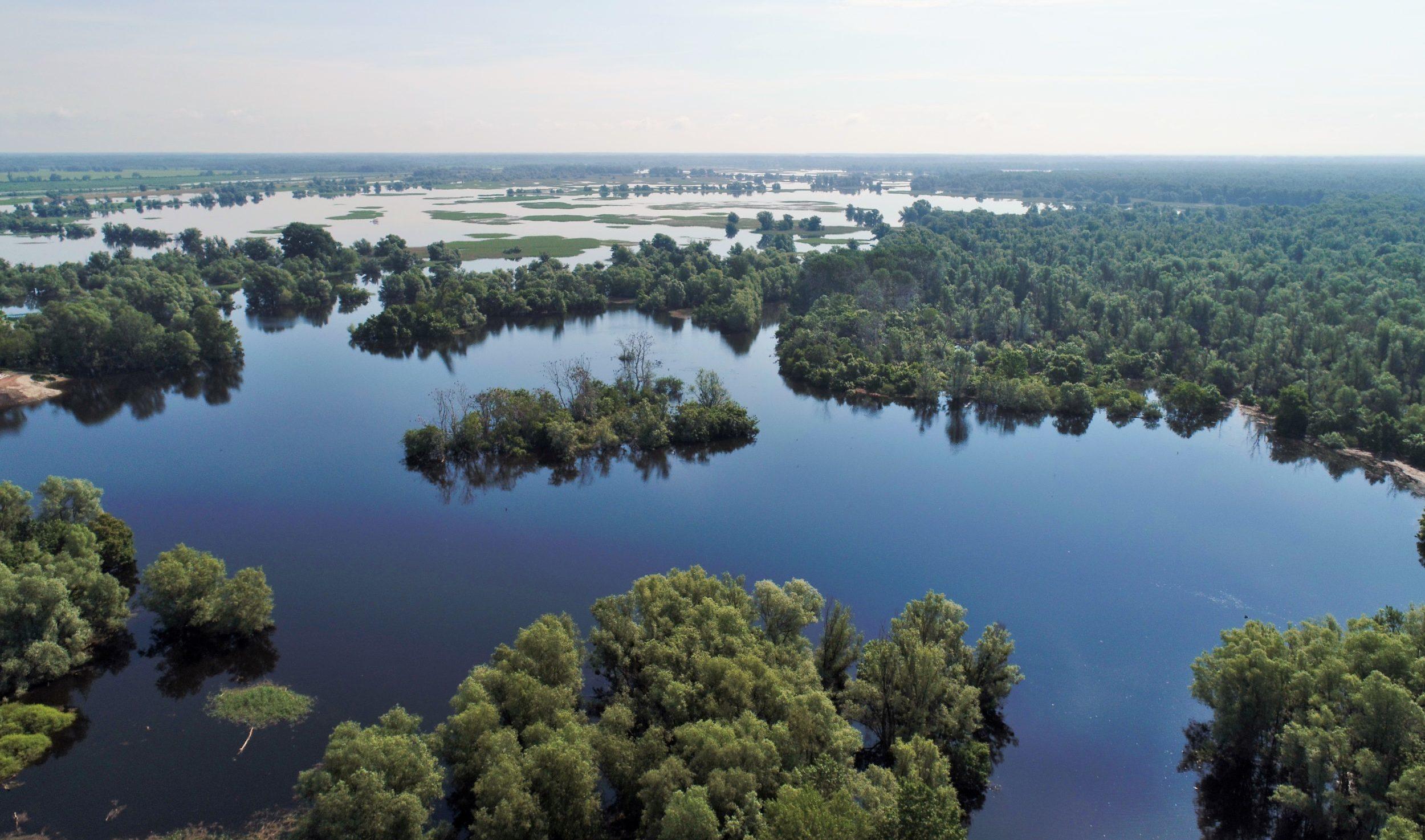 Sklad glazbe i prirode na Međunarodni dan Dunava u Kopačkom ritu